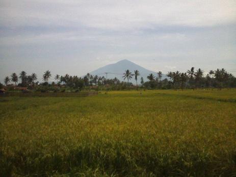 Garut View
